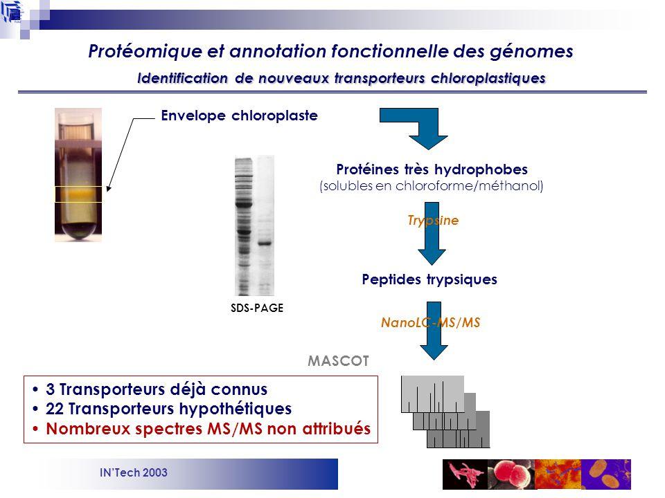 Protéomique et annotation fonctionnelle des génomes