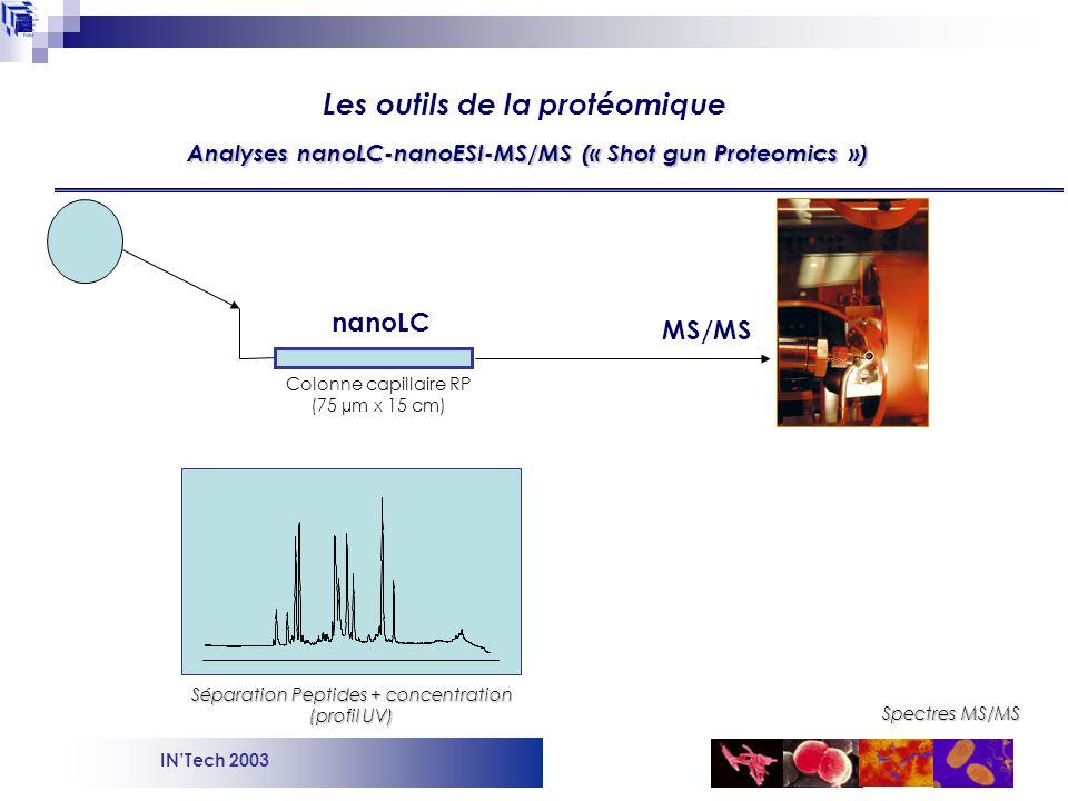 Analyses nanoLC-nanoESI-MS/MS (« Shot gun Proteomics »)