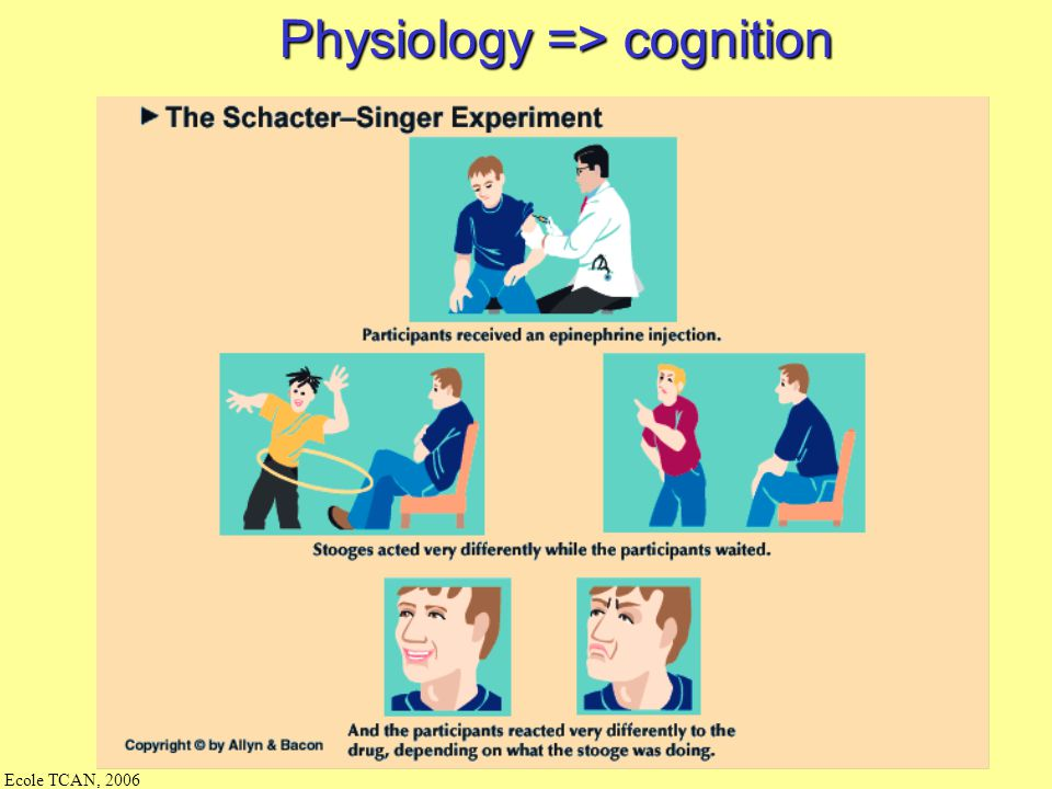 Physiology => cognition