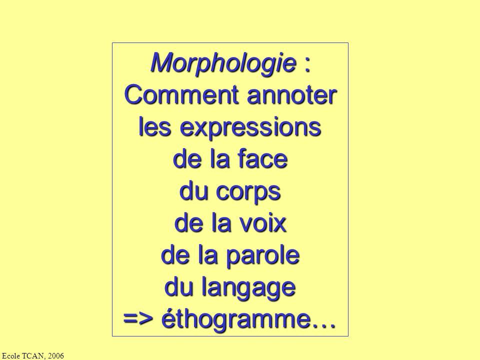 Morphologie : Comment annoter. les expressions. de la face. du corps. de la voix. de la parole.