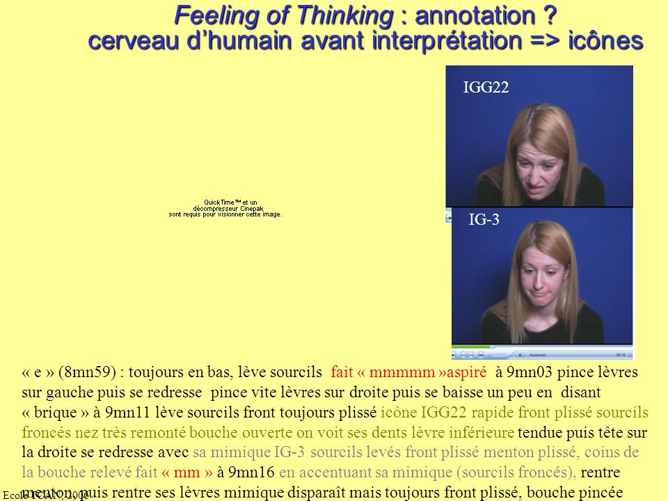 Feeling of Thinking : annotation