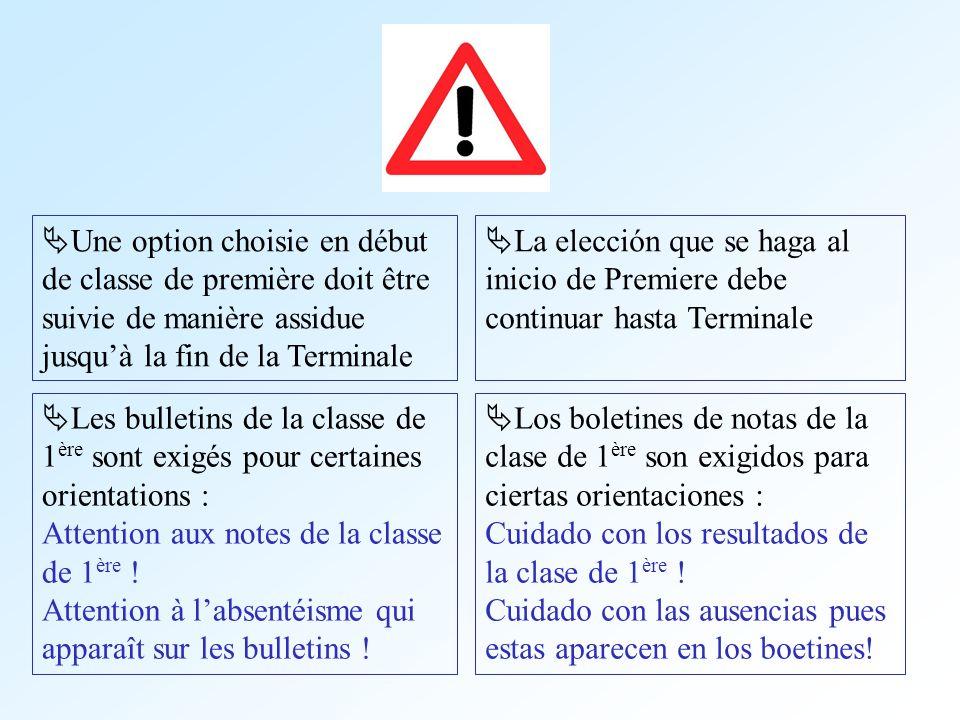Une option choisie en début de classe de première doit être suivie de manière assidue jusqu'à la fin de la Terminale