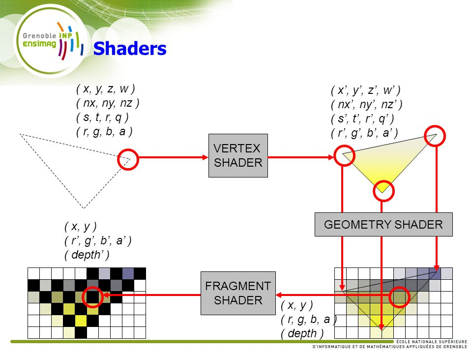 Shaders ( x, y, z, w ) ( x', y', z', w' ) ( nx, ny, nz )