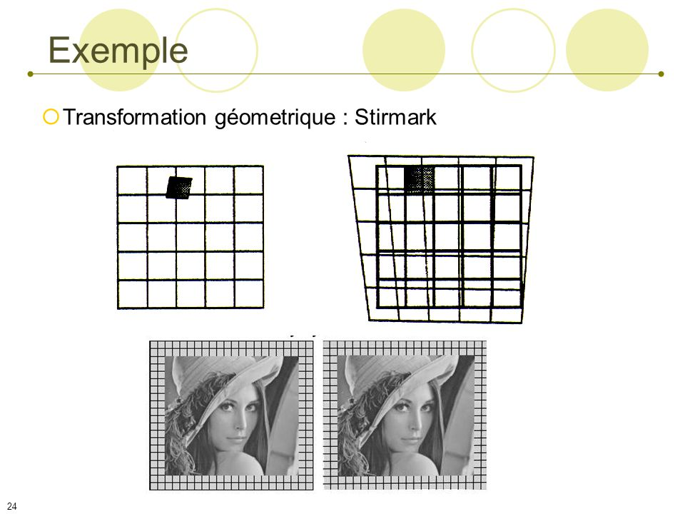 Exemple Transformation géometrique : Stirmark