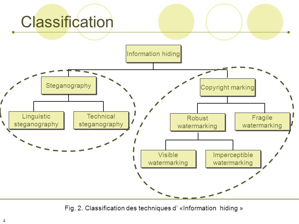 Fig. 2. Classification des techniques d' «Information hiding »