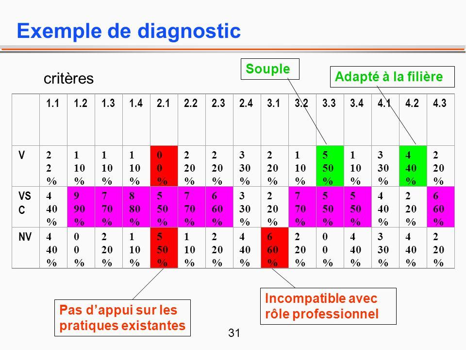 Exemple de diagnostic critères Souple Adapté à la filière