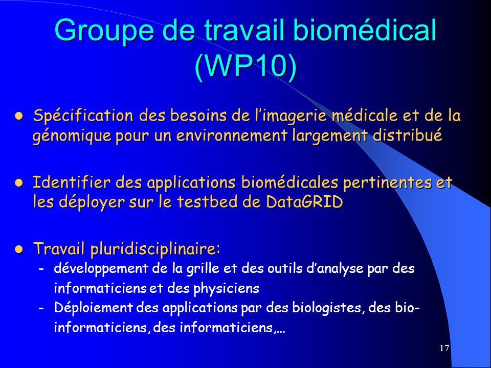 Groupe de travail biomédical (WP10)