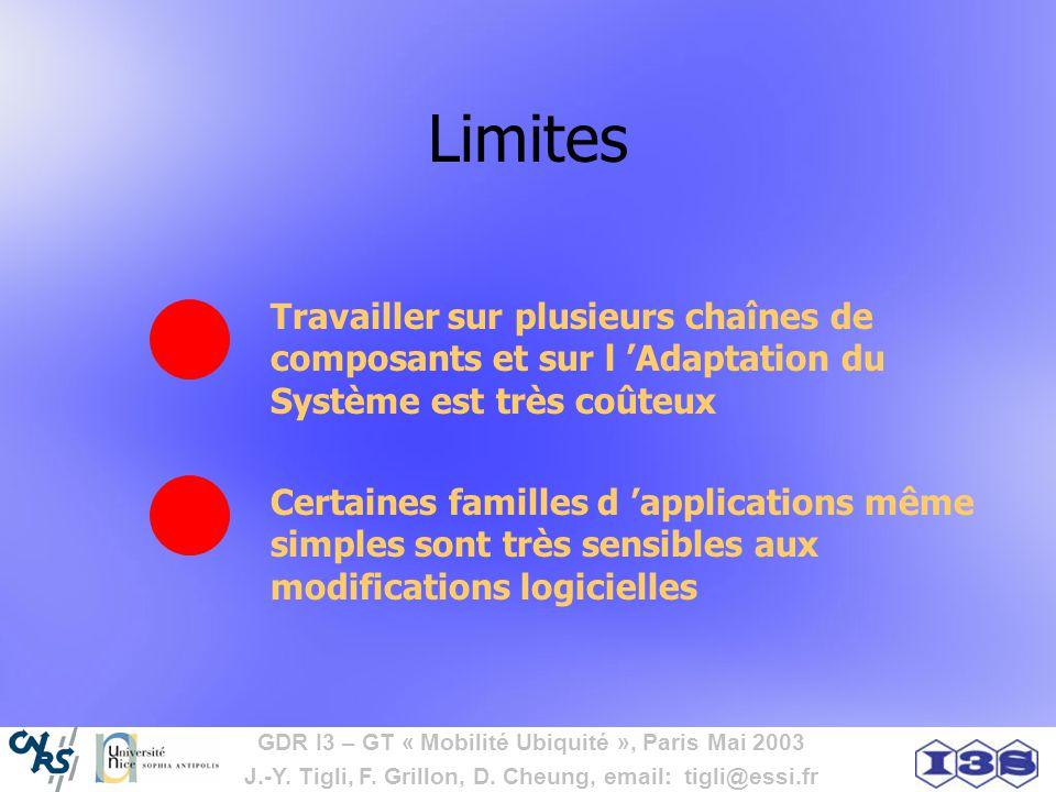 Limites Travailler sur plusieurs chaînes de composants et sur l 'Adaptation du Système est très coûteux.