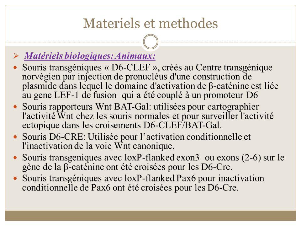 Materiels et methodes Matériels biologiques: Animaux:
