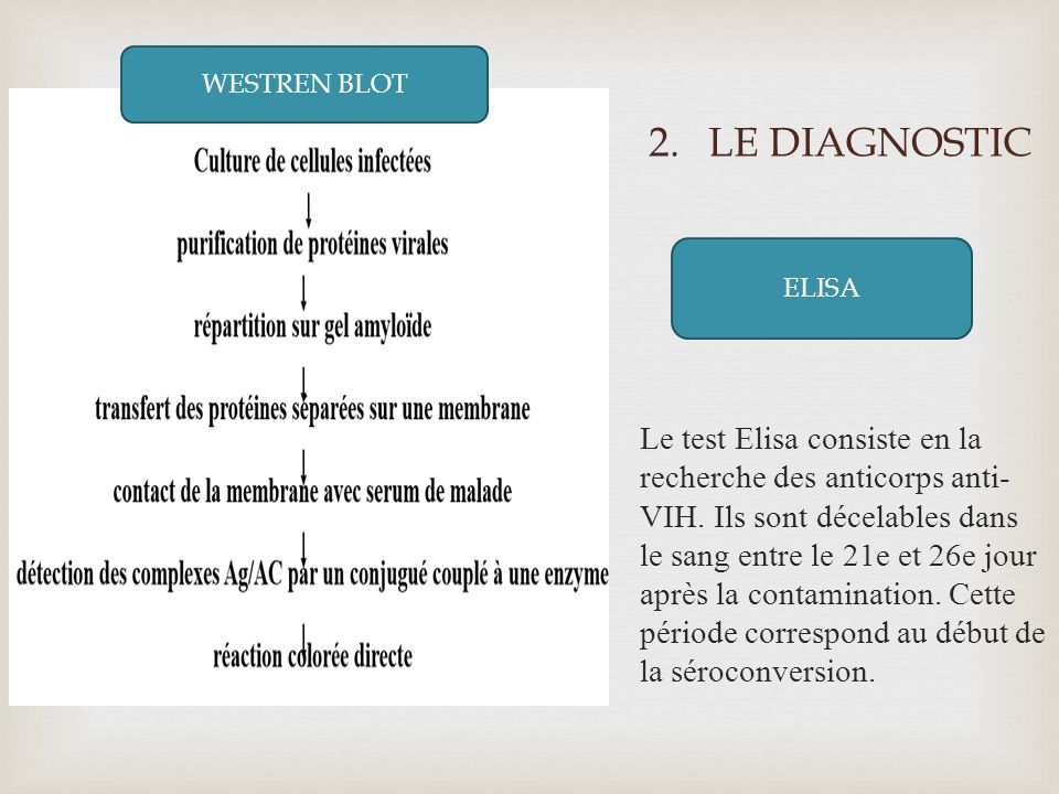 LE DIAGNOSTIC WESTERN BLOT