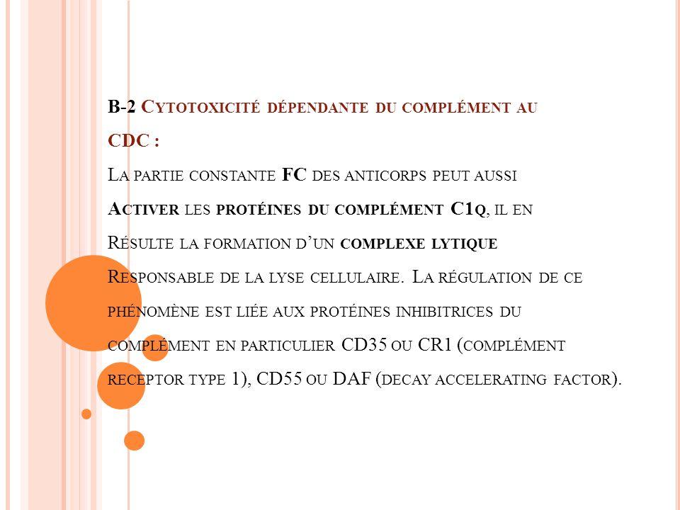 B-2 Cytotoxicité dépendante du complément au CDC : La partie constante FC des anticorps peut aussi Activer les protéines du complément C1q, il en Résulte la formation d'un complexe lytique Responsable de la lyse cellulaire.