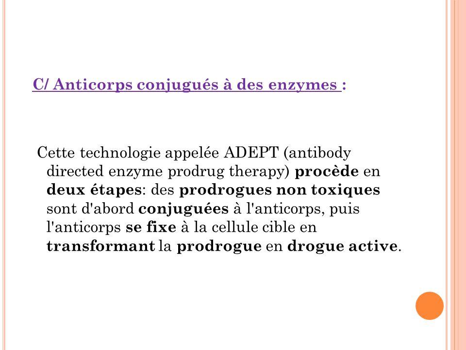 C/ Anticorps conjugués à des enzymes : Cette technologie appelée ADEPT (antibody directed enzyme prodrug therapy) procède en deux étapes: des prodrogues non toxiques sont d abord conjuguées à l anticorps, puis l anticorps se fixe à la cellule cible en transformant la prodrogue en drogue active.