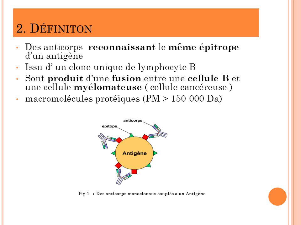 2. Définiton Des anticorps reconnaissant le même épitrope d'un antigène. Issu d' un clone unique de lymphocyte B.
