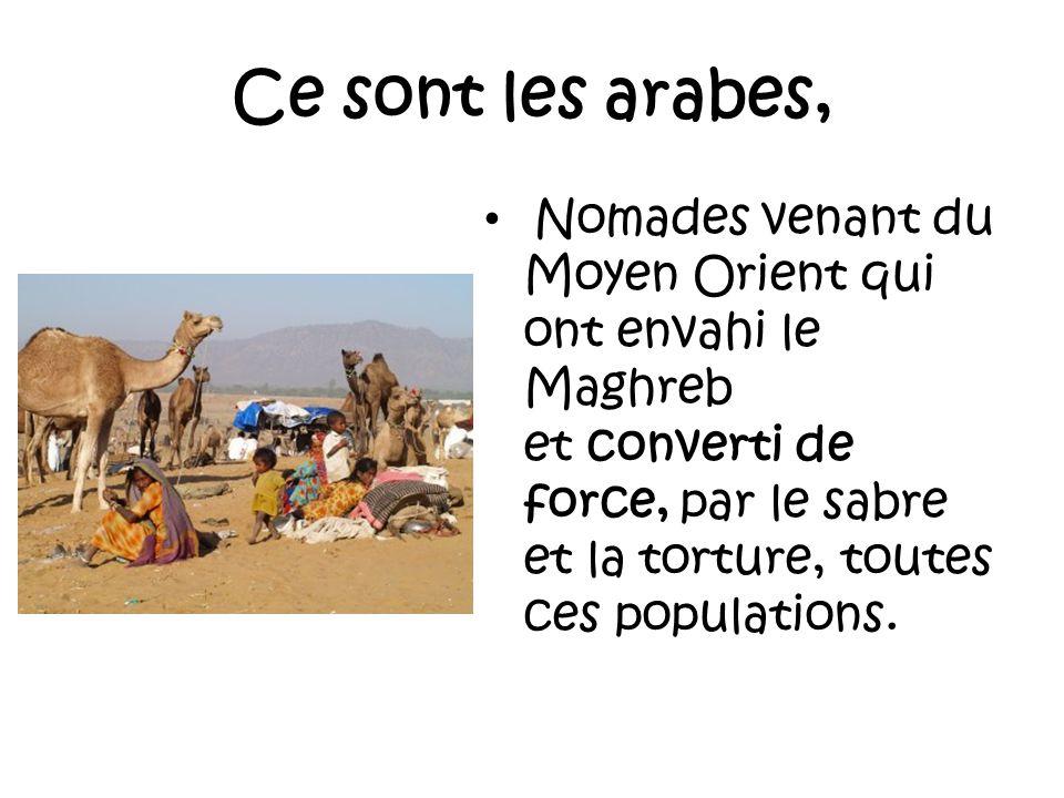 Ce sont les arabes,