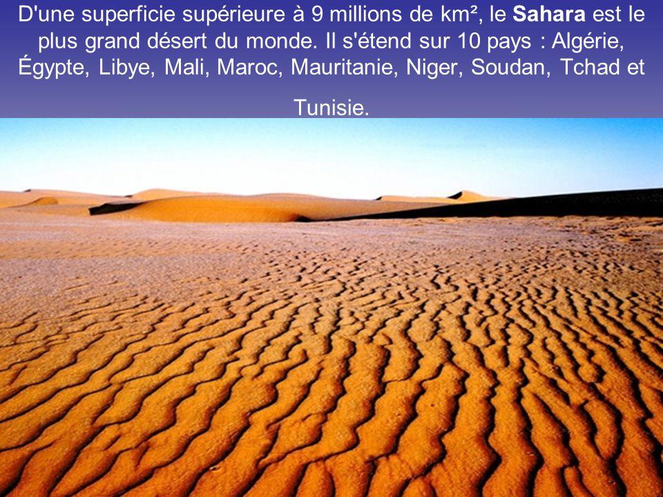 D une superficie supérieure à 9 millions de km², le Sahara est le plus grand désert du monde.