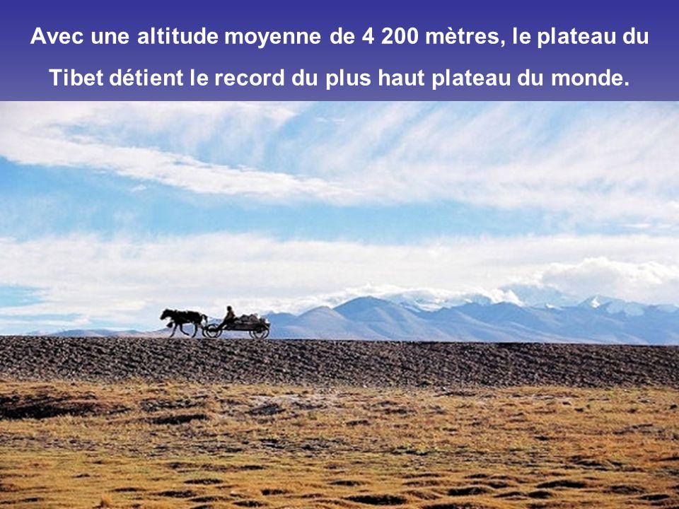 Avec une altitude moyenne de 4 200 mètres, le plateau du Tibet détient le record du plus haut plateau du monde.
