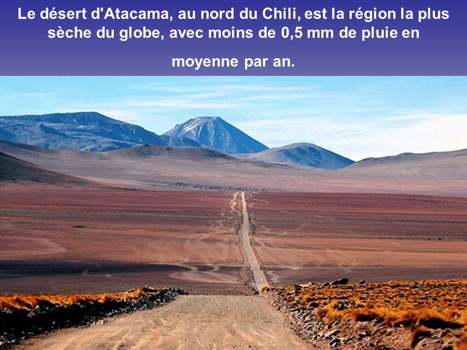 Le désert d Atacama, au nord du Chili, est la région la plus sèche du globe, avec moins de 0,5 mm de pluie en moyenne par an.