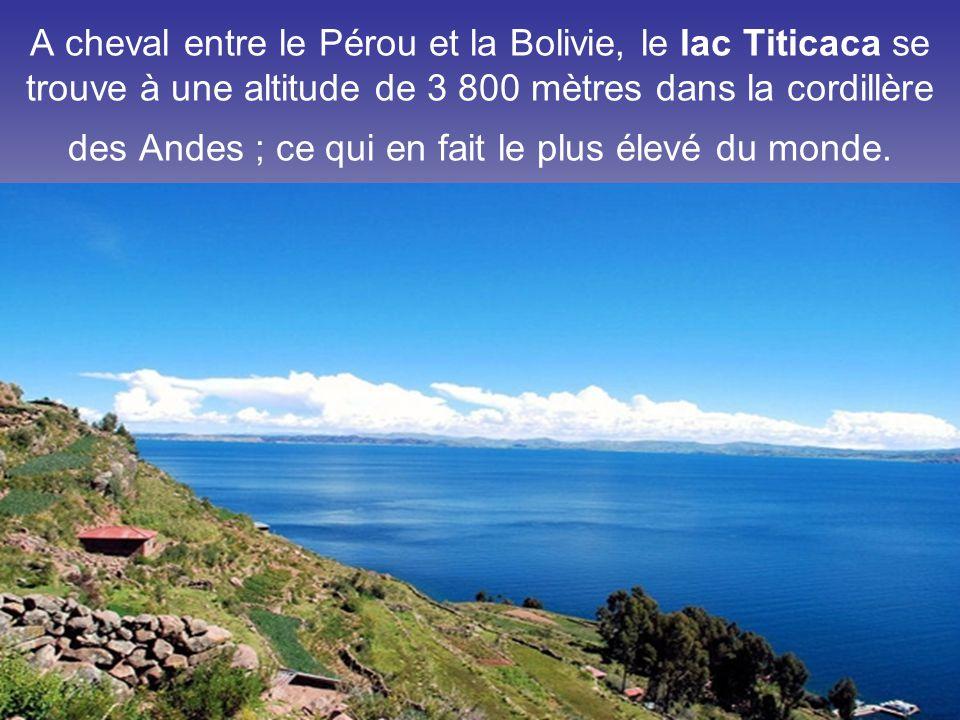 A cheval entre le Pérou et la Bolivie, le lac Titicaca se trouve à une altitude de 3 800 mètres dans la cordillère des Andes ; ce qui en fait le plus élevé du monde.