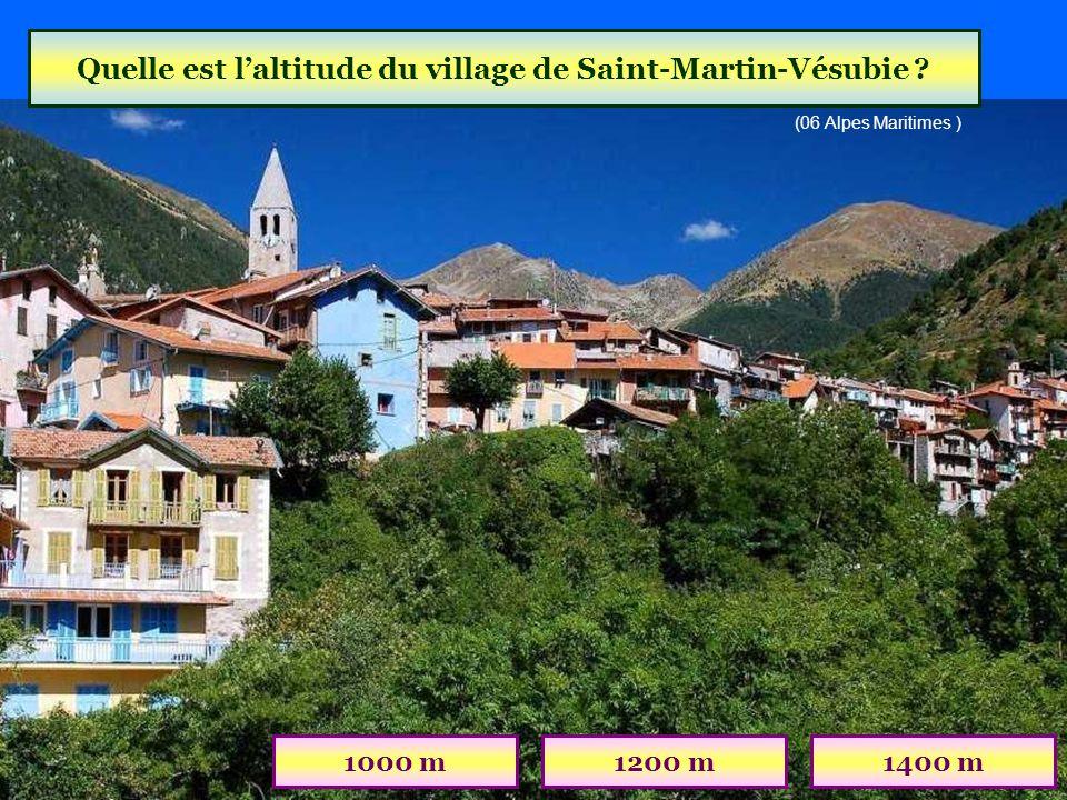 Quelle est l'altitude du village de Saint-Martin-Vésubie