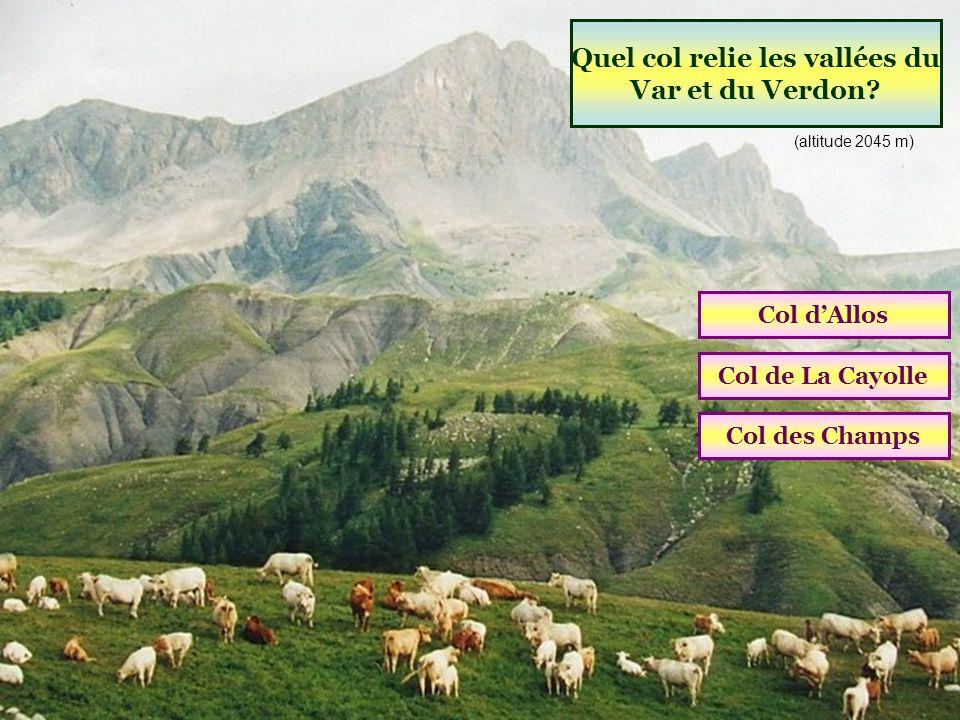 Quel col relie les vallées du Var et du Verdon