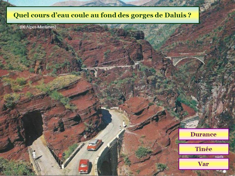 Quel cours d'eau coule au fond des gorges de Daluis