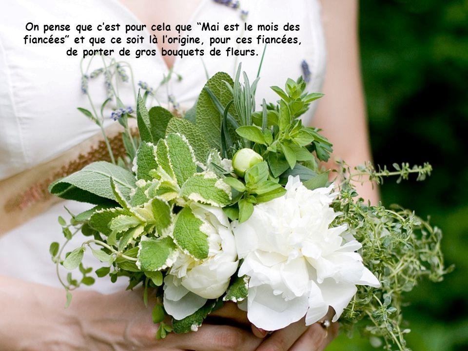 On pense que c'est pour cela que Mai est le mois des fiancées et que ce soit là l'origine, pour ces fiancées, de porter de gros bouquets de fleurs.
