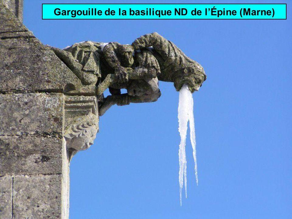 Gargouille de la basilique ND de l'Épine (Marne)