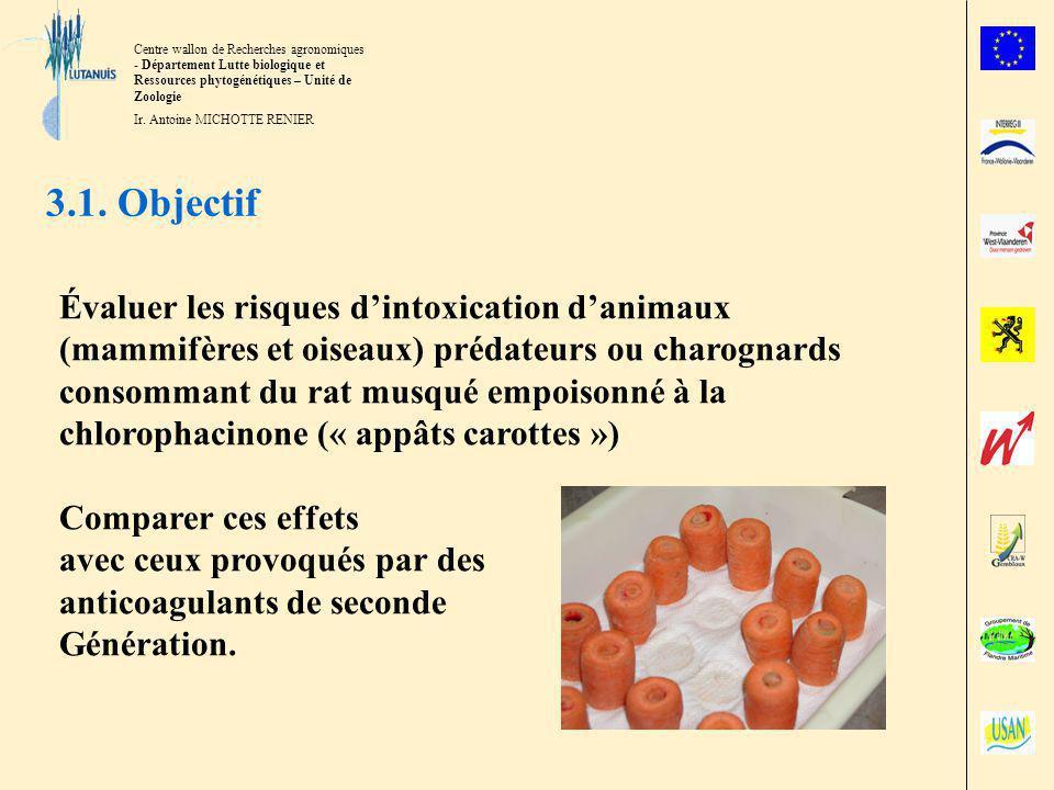 3.1. Objectif