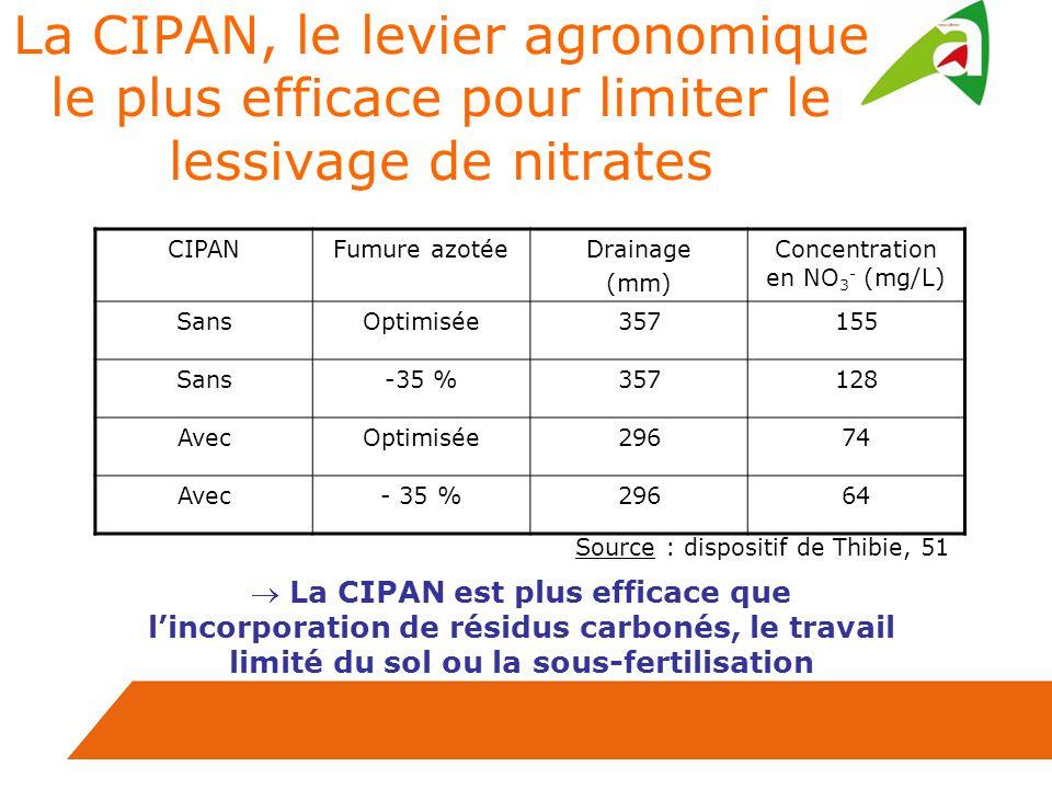La CIPAN, le levier agronomique le plus efficace pour limiter le lessivage de nitrates