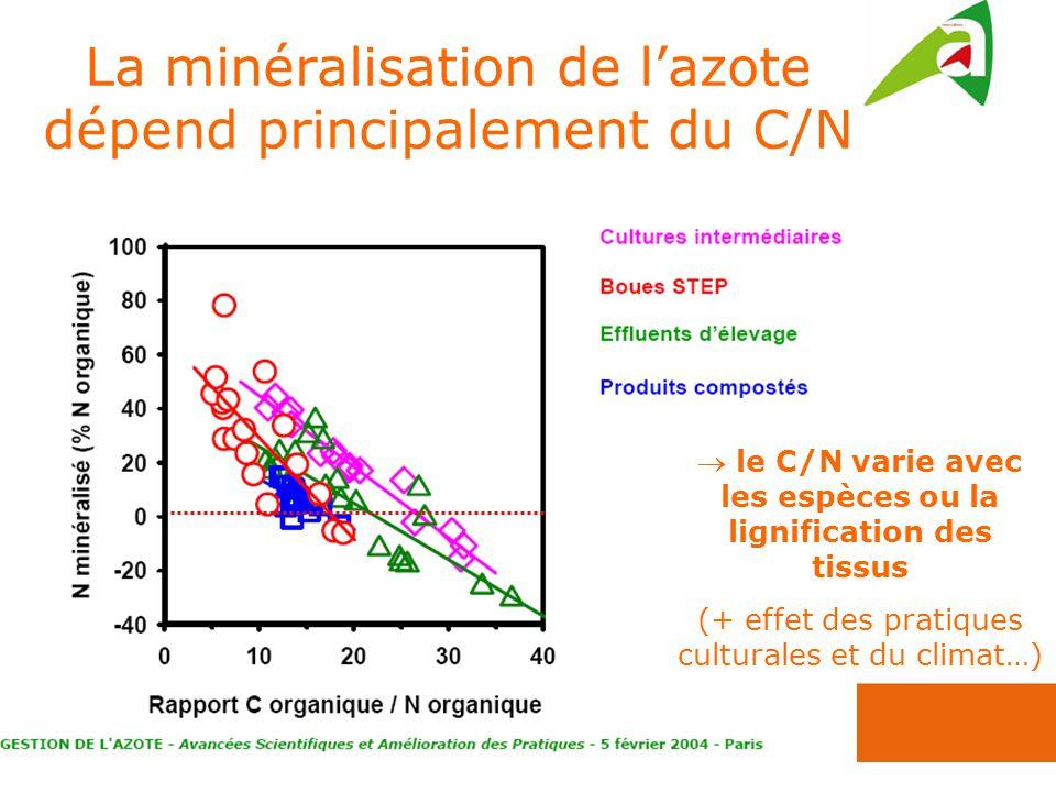 La minéralisation de l'azote dépend principalement du C/N