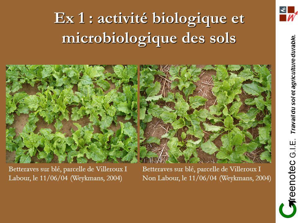 Ex 1 : activité biologique et microbiologique des sols