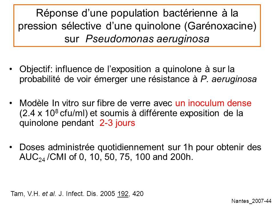 Réponse d'une population bactérienne à la pression sélective d'une quinolone (Garénoxacine) sur Pseudomonas aeruginosa