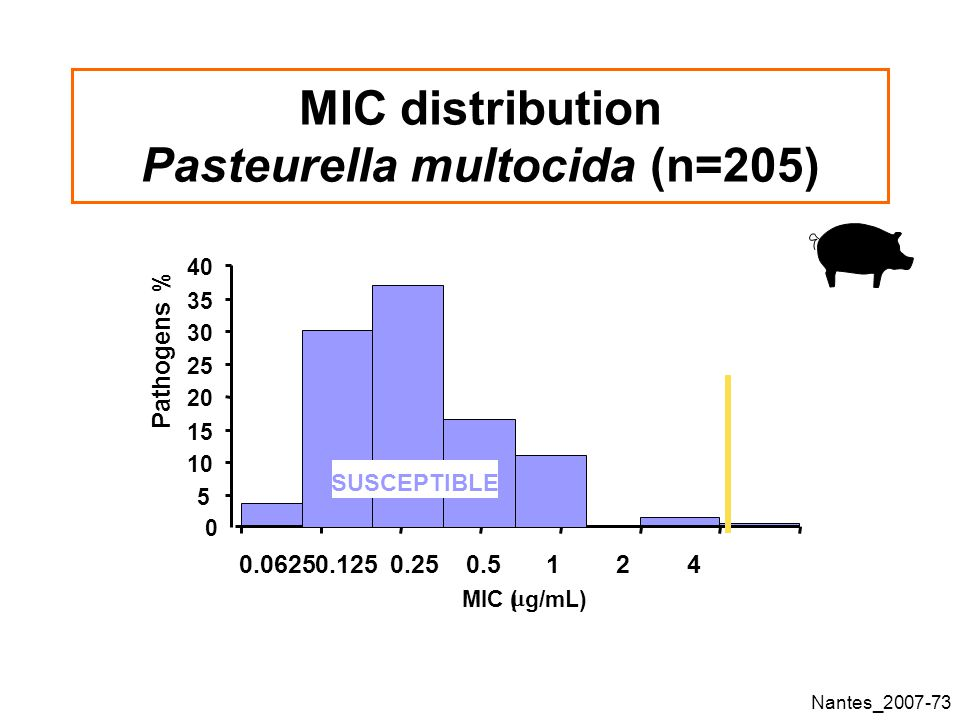 MIC distribution Pasteurella multocida (n=205)