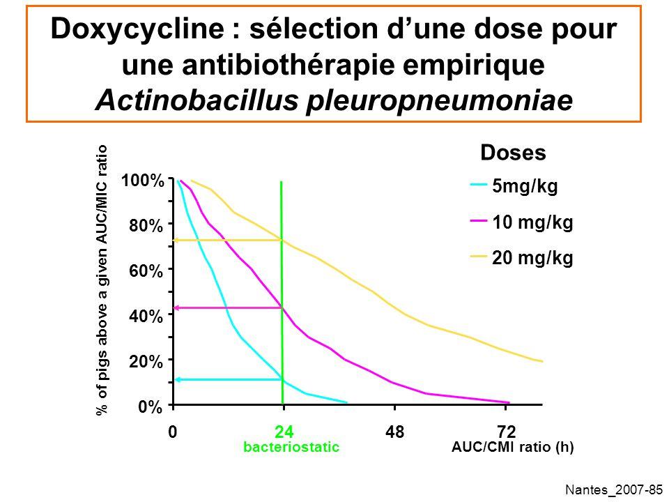 Doxycycline : sélection d'une dose pour une antibiothérapie empirique Actinobacillus pleuropneumoniae