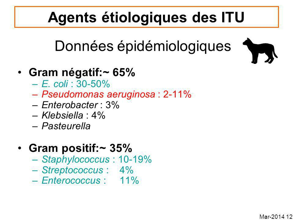 Agents étiologiques des ITU