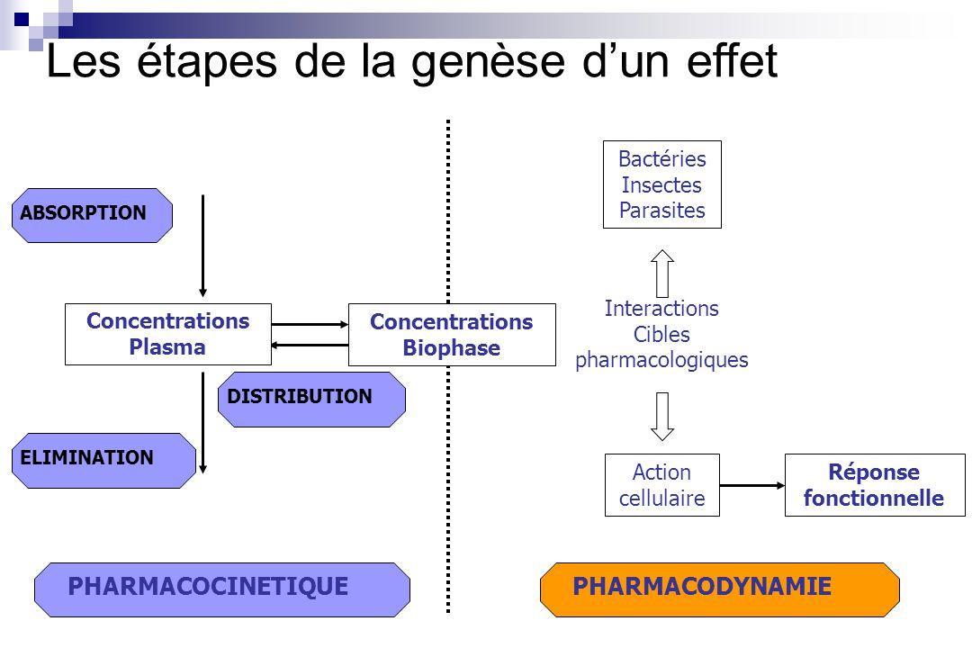 Les étapes de la genèse d'un effet