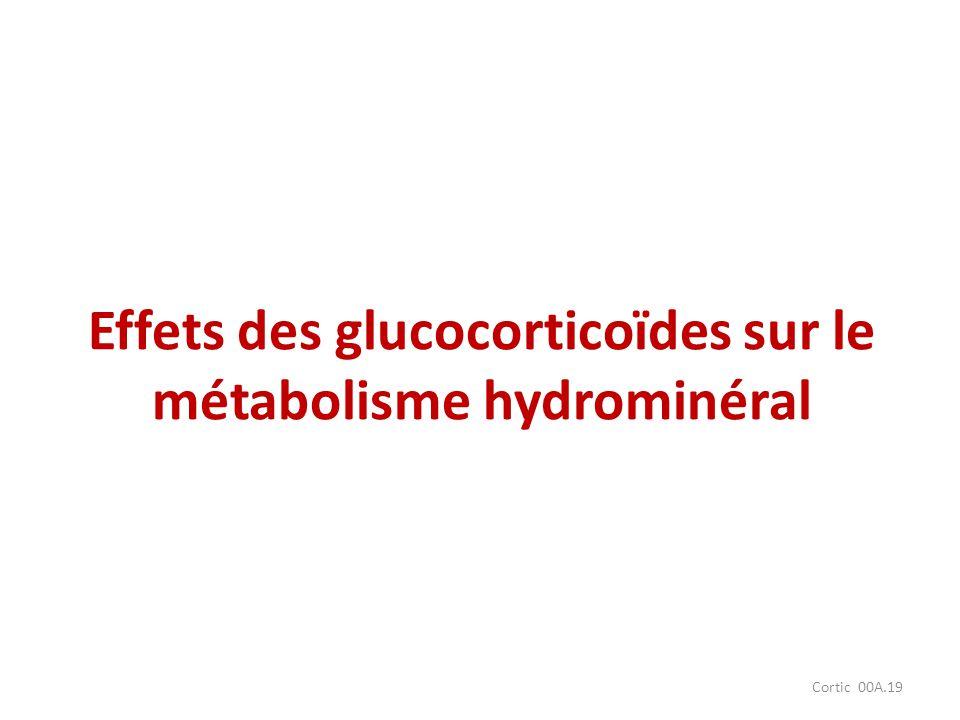 Effets des glucocorticoïdes sur le métabolisme hydrominéral