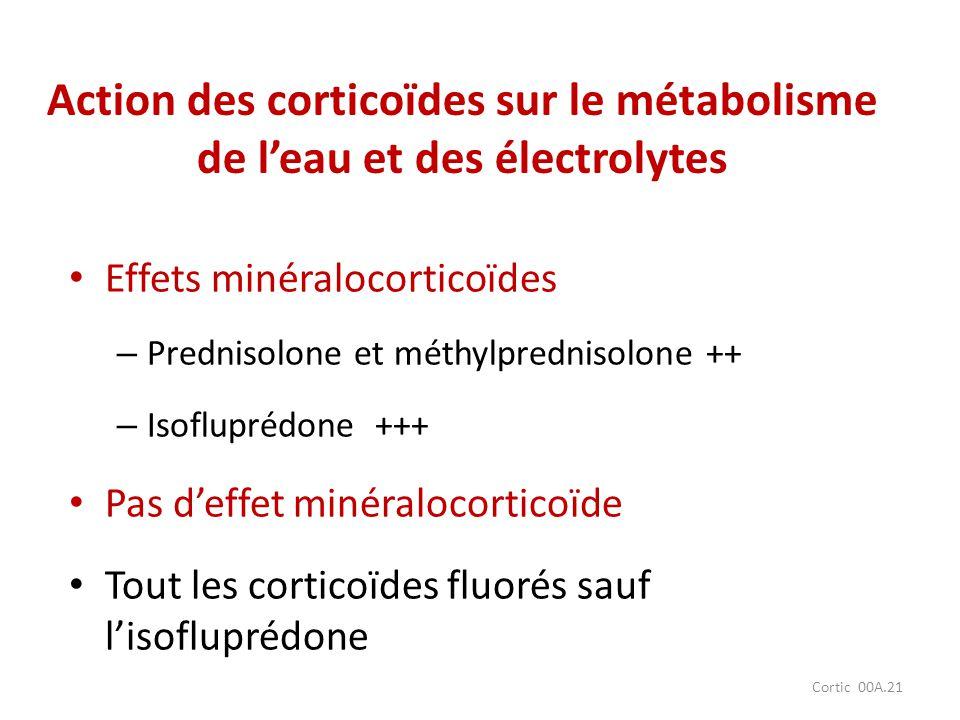 Action des corticoïdes sur le métabolisme de l'eau et des électrolytes