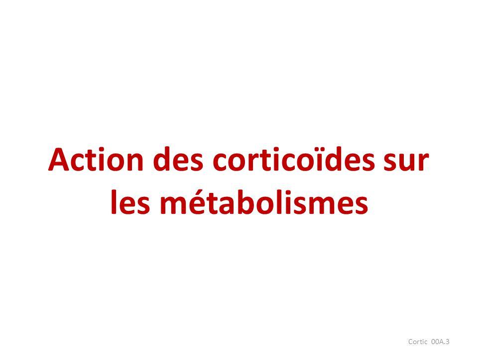 Action des corticoïdes sur les métabolismes