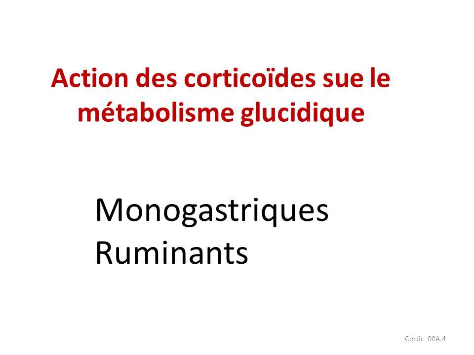 Action des corticoïdes sue le métabolisme glucidique