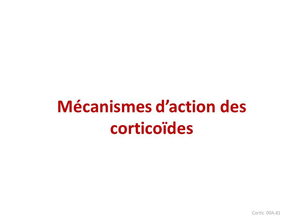 Mécanismes d'action des corticoïdes