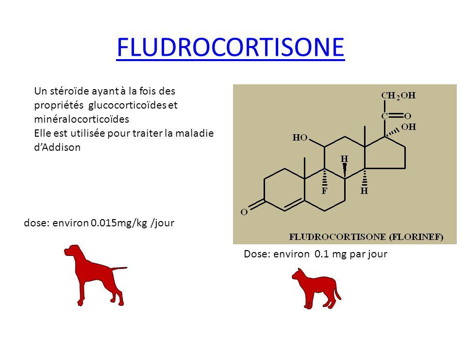FLUDROCORTISONE Un stéroïde ayant à la fois des propriétés glucocorticoïdes et. minéralocorticoïdes.