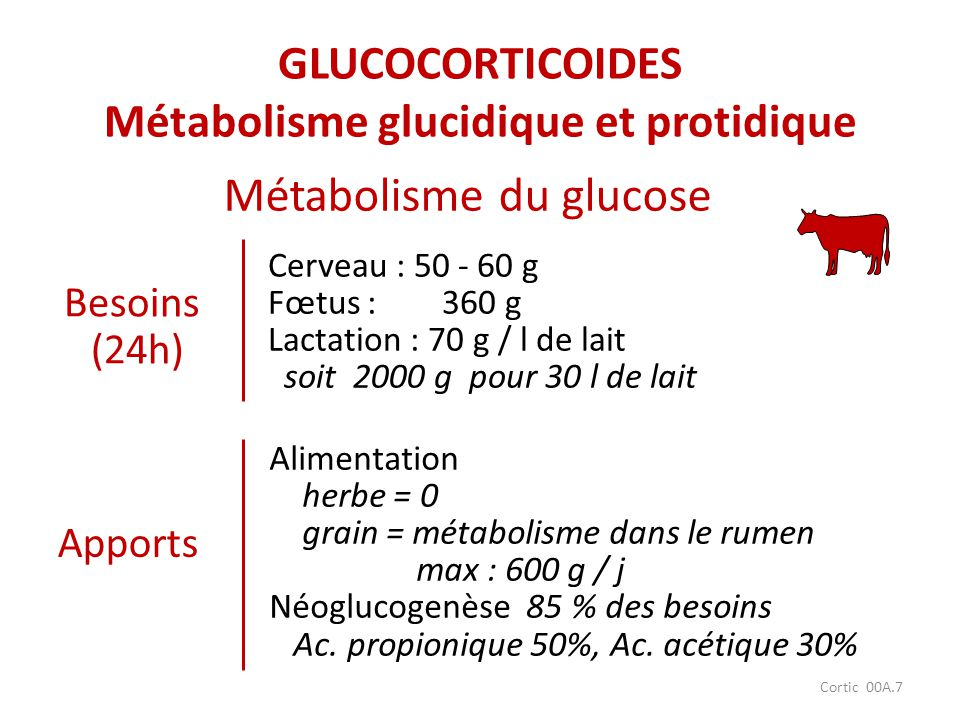GLUCOCORTICOIDES Métabolisme glucidique et protidique