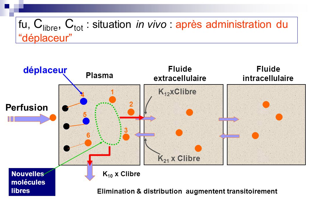 Elimination & distribution augmentent transitoirement