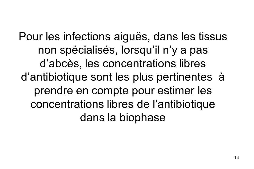 Pour les infections aiguës, dans les tissus non spécialisés, lorsqu'il n'y a pas d'abcès, les concentrations libres d'antibiotique sont les plus pertinentes à prendre en compte pour estimer les concentrations libres de l'antibiotique dans la biophase
