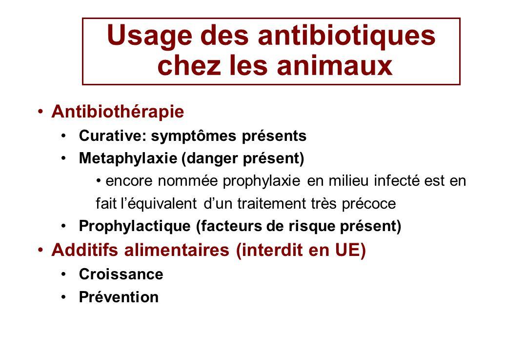 Usage des antibiotiques