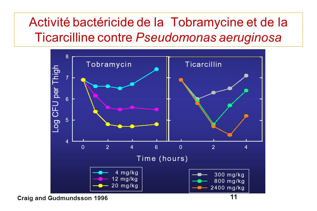 Activité bactéricide de la Tobramycine et de la Ticarcilline contre Pseudomonas aeruginosa