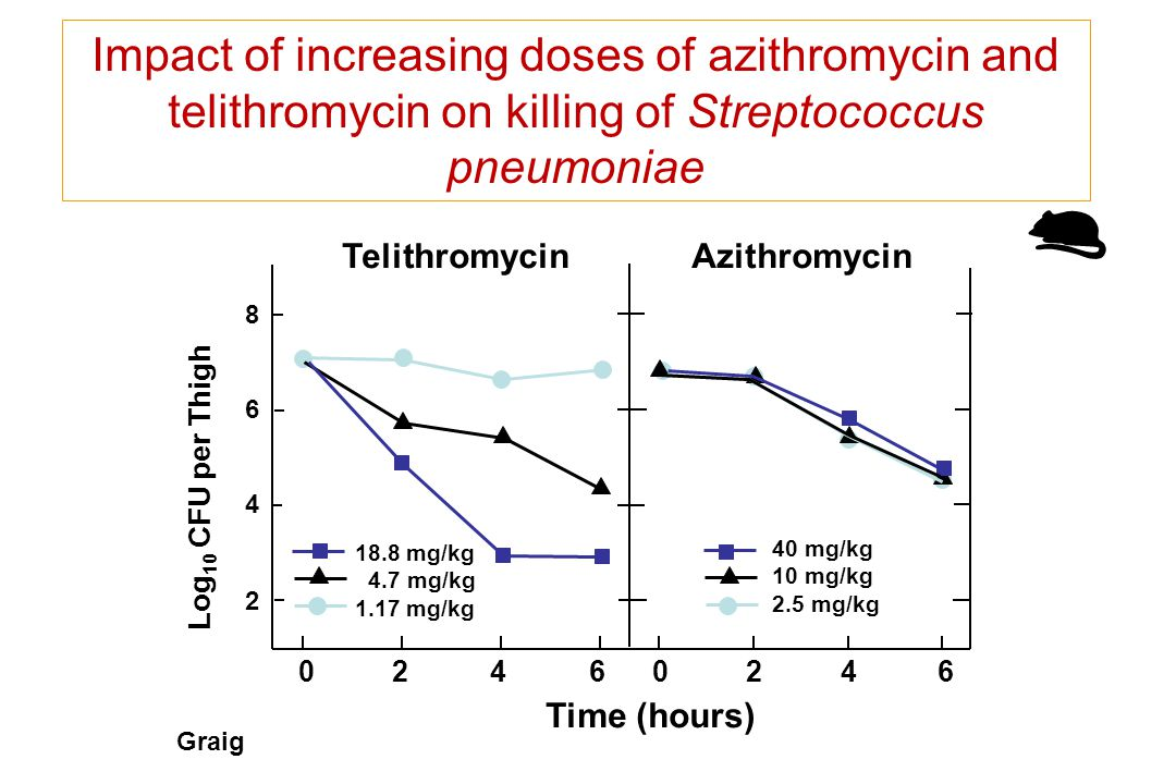 Impact of increasing doses of azithromycin and telithromycin on killing of Streptococcus pneumoniae