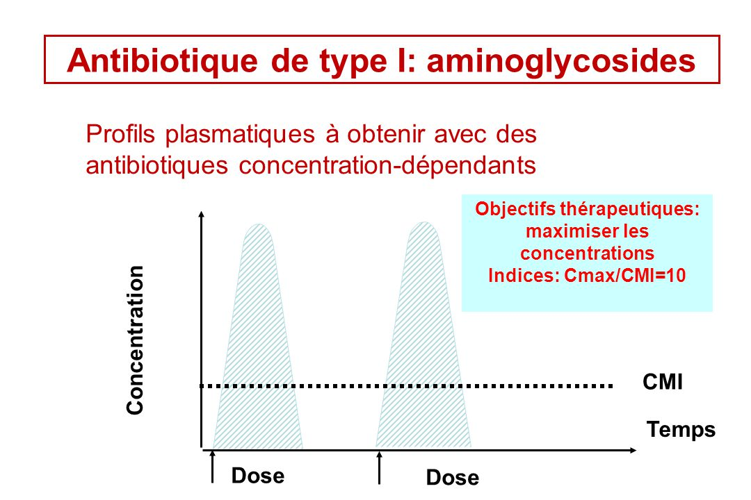 Antibiotique de type I: aminoglycosides