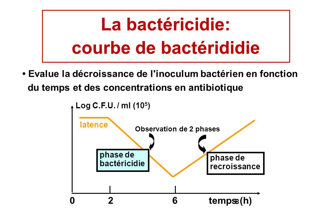 courbe de bactérididie